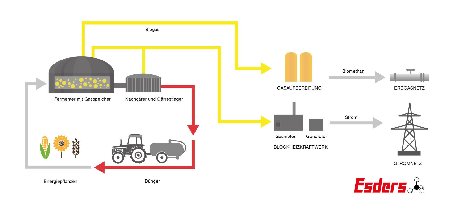 Grafik-Biogasanlage-Aufbau