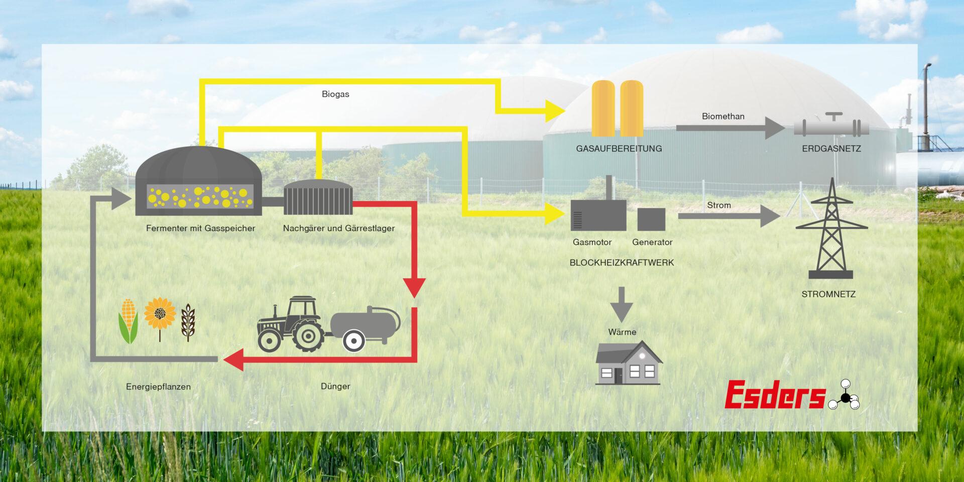 Biogasanlage-Aufbau-Grafik